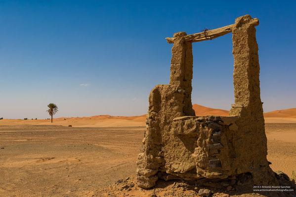 Comienza el desierto / It begins the desert