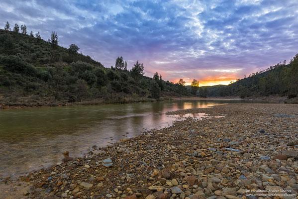 A orillas del río Odiel  /  Edge river Odiel