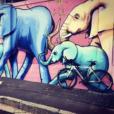 Victoria Road, Bakoven - September 18th 2020, 09:41 am - 'elephant'