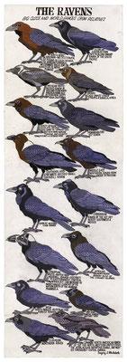 http://www.artbrut.ch/fr/21004/1063/auteurs/blackstock--gregory-l-
