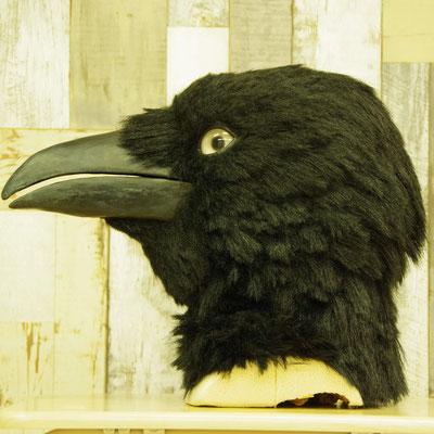Crow カラス