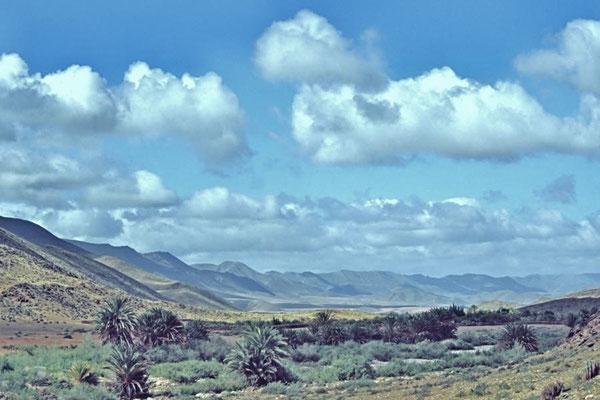 Der Norden von Westsahara grenzt an Marokko.