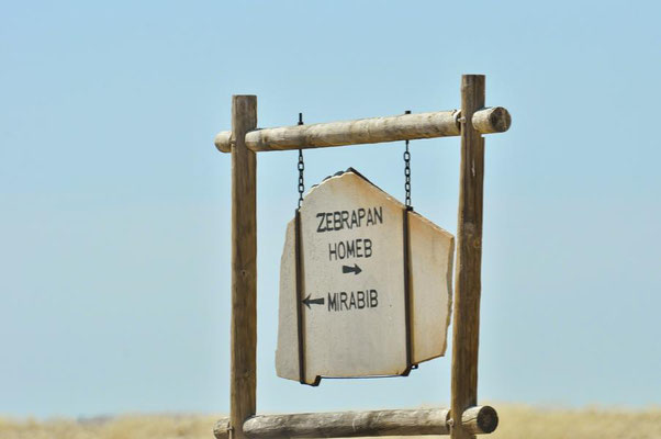 Zwischenstop an der Zebrapfanne.