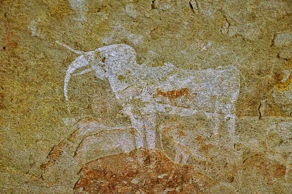 """Felsmalerei """"Der Weiße Elefant"""" in der Phillipshöhle."""
