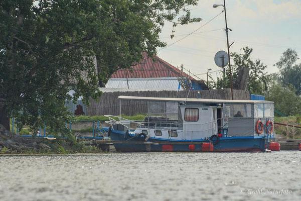"""Mit der Schaluppe """"Adria"""" ging es 3 Tage durch das Donaudelta."""