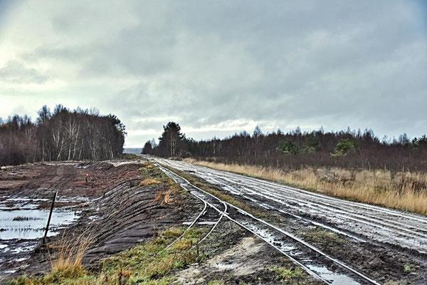 In der Diepholzer Moorniederung - Gleise der Moorbahn