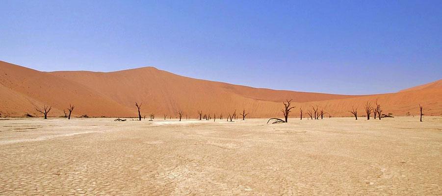 """""""Deadvlei"""" beim Sossusvlei, liegt im Namib-Naukluft-Nationalpark."""