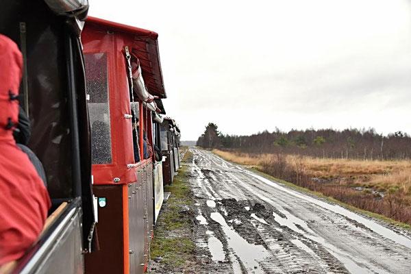 In der Diepholzer Moorniederung - Moorbahn
