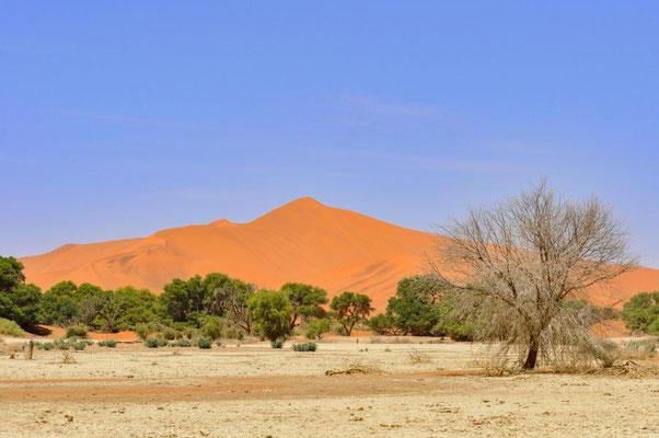 """Das Sossusvlei ist eine von Sanddünen umschlossene beige Salz-Ton-Pfanne (""""Vlei"""") in der Namib."""