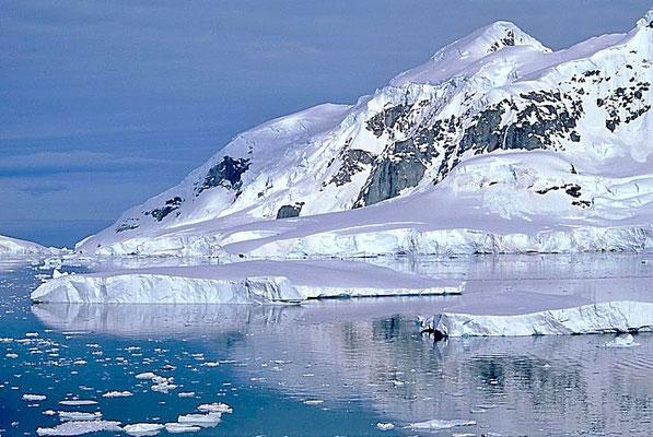 Der Name Paradise Bay wurde etwa ab 1920 von Walfängern benutzt, die in diesem Gebiet tätig waren.