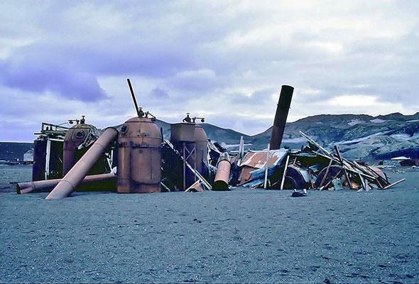 Walfänger Schrott auf Deception Island.
