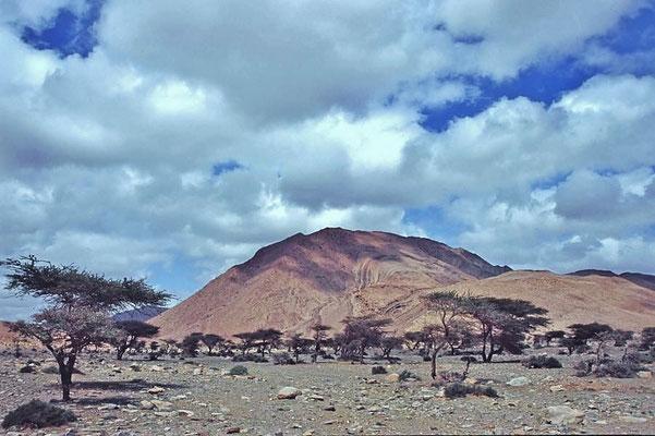 Westsahara, weite Teile des Landes sind wirtschaftlich noch unerschlossen, das Straßennetz ist dünn.