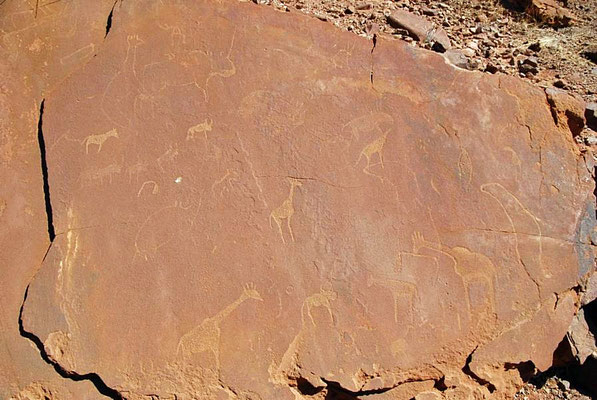 Felsgravuren von Twyfelfontain, erstaunlich ist die Abbildung einer Robbe, denn das Meer ist fast 100 Kilometer entfernt.