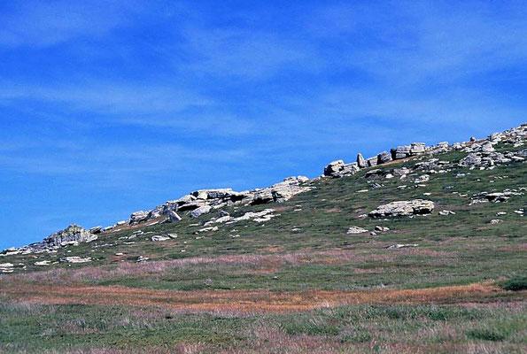 West Point Island liegt im Nordwesten der Falklandinseln. Die Insel ist 6 km lang und knapp 4 km breit. Ihr höchster Punkt Mount Misery ist 337 m hoch.