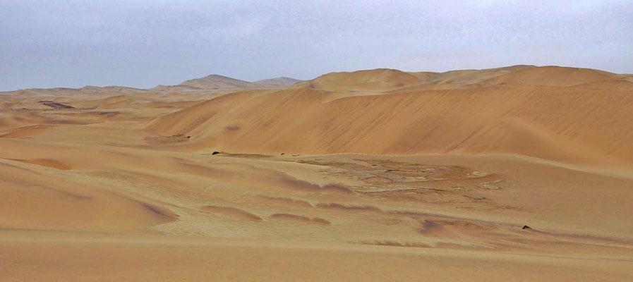 Namibwüste bei Swakopmund. Die Namib ist mit einem Alter von rund 80 Millionen Jahren die älteste Wüste der Welt.