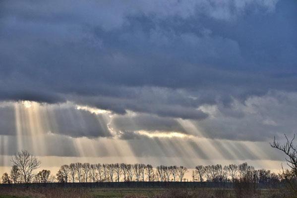 Sonnenstrahlen durchdringen die Wolkendecke