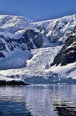 Gletscher an der Paradise Bay.