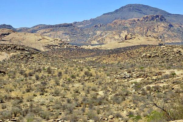 Blick über die Ameib Ranch. Mit 19000 Hektar gehört Ameib zu den größeren Farmen.