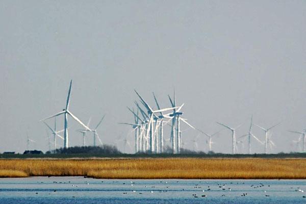 Windpark am Hauke-Haien-Koog
