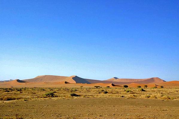 Das Sossusvlei in der Namib ist umgeben von den höchsten Dünen der Welt aus rotem Sand, sie sind bis 380m hoch.