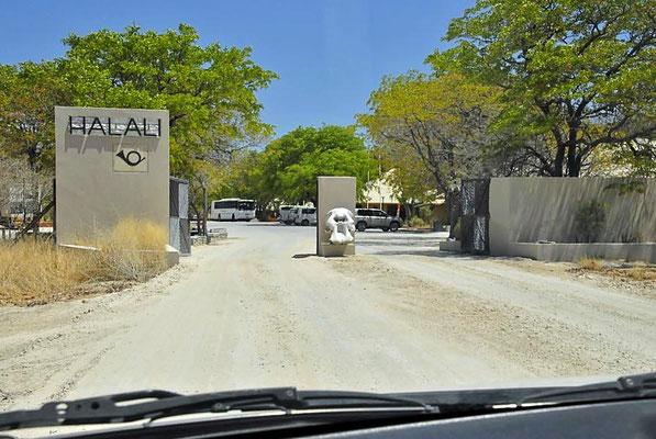 Das Camp Halali liegt zentral im Etohsa Nationalpark, ideal für Tierbeobachtungen. Es gibt ein Wasserloch mit Sitzmöglichkeiten.