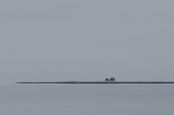 Blick auf Vogelfreistätte Hallig Norderoog