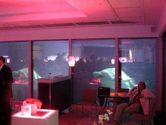 La soirée a démarrée ... le décor vidéo prend toute sa splendeur... ici avec de requins ou d'énormes poissons...