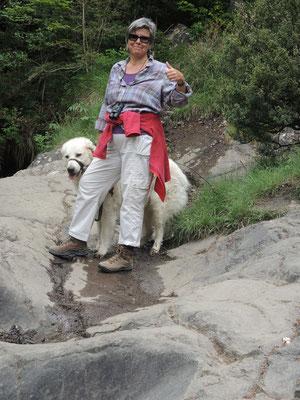 Kletterpartie unfallfrei geschafft