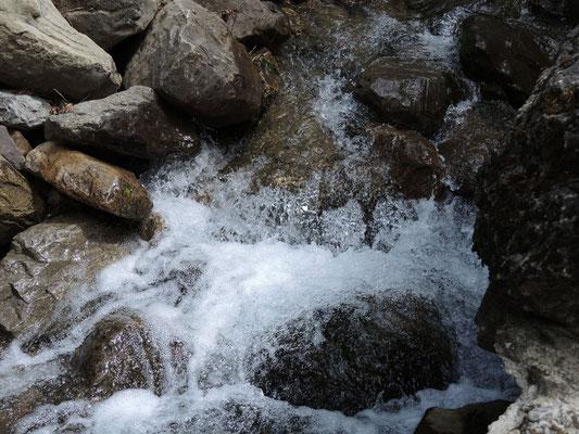 Wasser - der ständige Begleiter des heutigen Wandertages