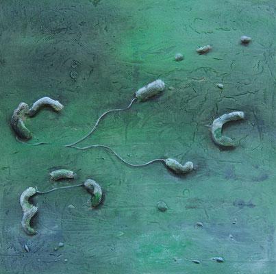 """""""Campylobacter species""""  60 x 60 cm,  2006"""