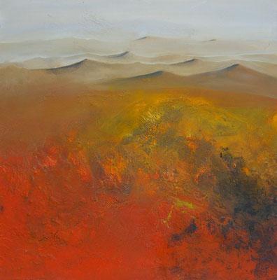"""rote Wüste""  80 x 80 cm,  2006"