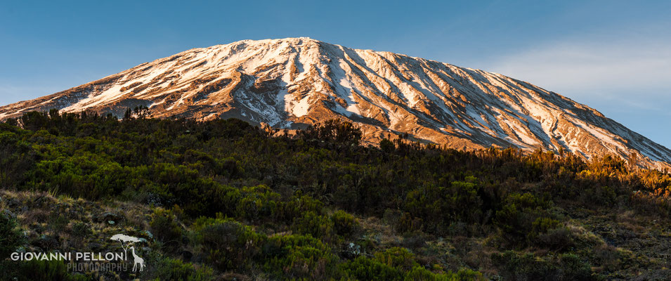 Snow capped Kibo at sunrise - seen from Simba Camp (2'671 m)