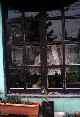 通りがかりの窓