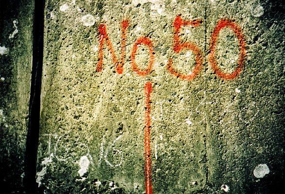かつてといつか22/No.50