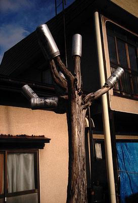 ビールの木