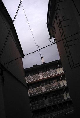 公営住宅/記憶/電線