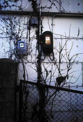 計器/壁/ツタ/繰り返し撮るモチーフ