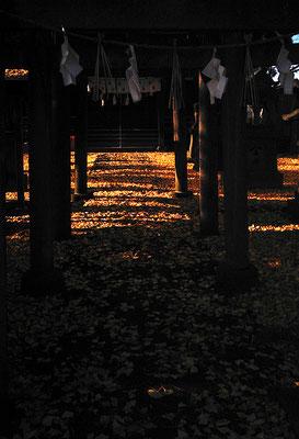 黄色く踏みしだく秋