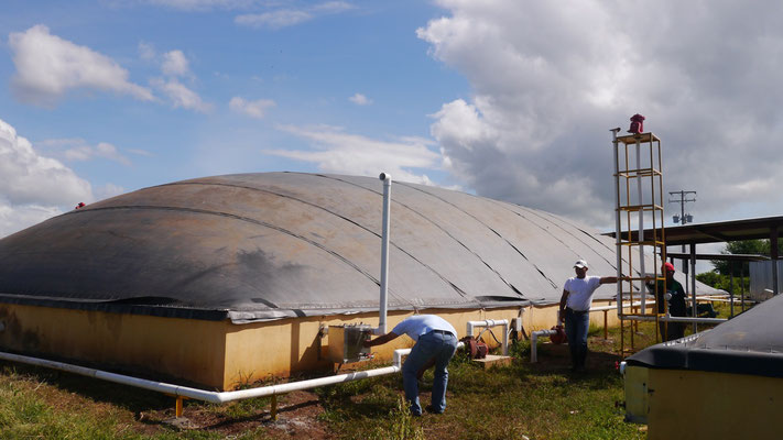 Biodigestor Protena - fábrica de plasma - Nicaragua