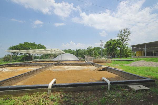 Biodigestor para estiércol de ganado vacuno - covered lagoon digester for dairy manure