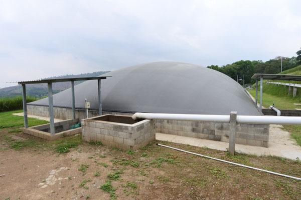 Biodigestor para gallinaza pura - guano