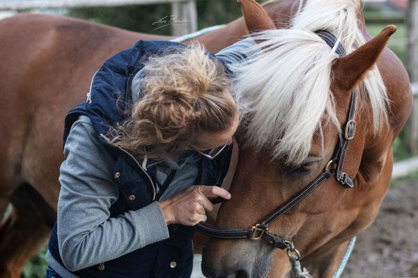 Behandlung des 7. Halswirbel mit freundlichem Zureden - Foto: Lara Bender Fotografie