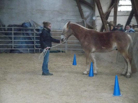 Auch Pylonen helfen bei Stellung und Biegung