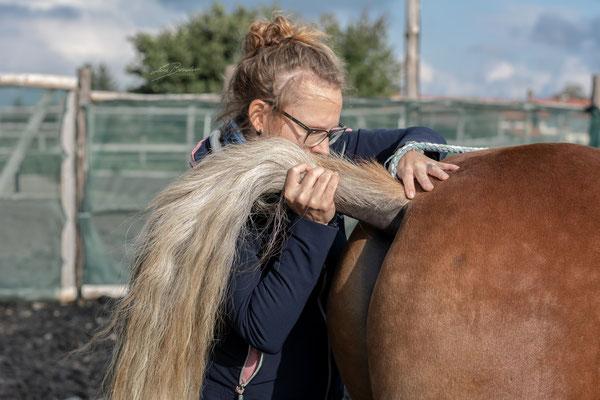 Behandlung des ersten Schweifwirbels - Foto: Lara Bender Fotografie