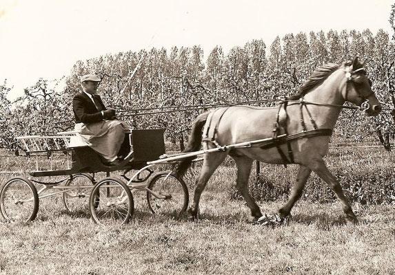 Man (jan) en Paard.