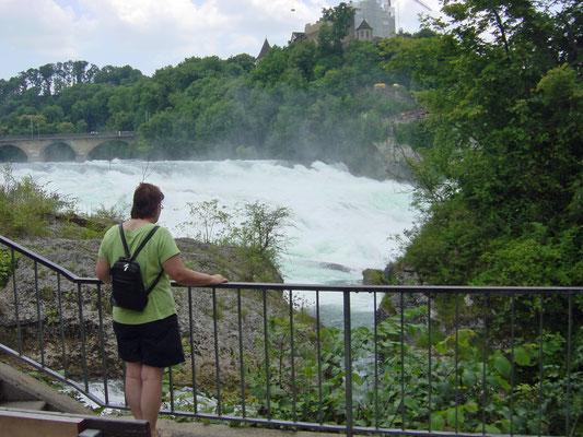 De waterval van Schaffhausen. Met Nellie