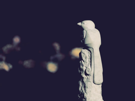 Paradisvogel / Marmor / Anna Erdin