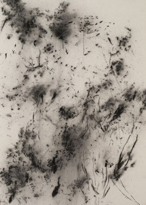 The wind that shakes the barley, 2017. Houtskool op papier, 29.7x21cm.