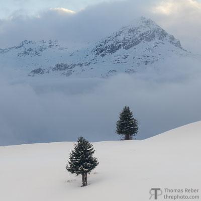 Switzerland, Surses, Alp Flix