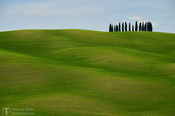 Italy, San Quirico di Val d'Orcia, the most photographed cypresses
